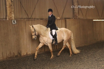 OPEN TO ALL DRESSAGE SERIES 1 COMPETITION